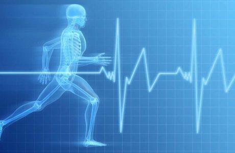 חשיבות הפעילות הגופנית לבריאות