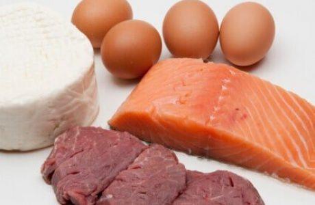 מהם חלבונים?